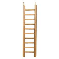 Escalerilla Hombros y Manos